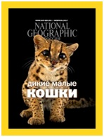 «National Geographic Россия»